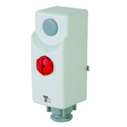 Aquastat d'applique de sécurité 110° avec réarment manuel fixe 55°
