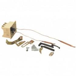 Thermostat BTS 450 avec capillaire